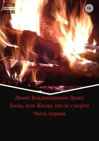 Денис Владимирович Лунгу - Кома, или Жизнь после смерти. Часть 1
