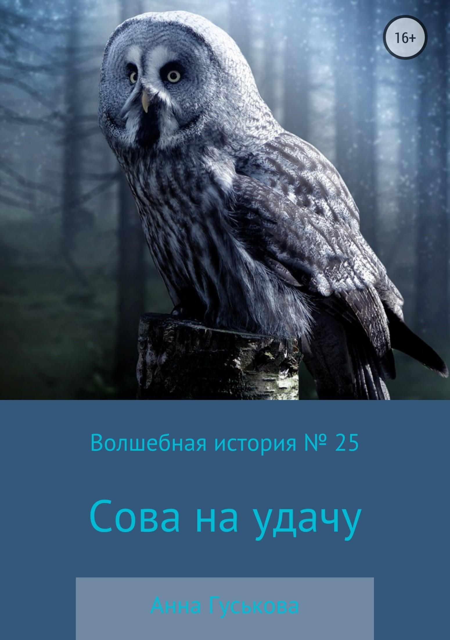 Волшебная история № 25. Сова на удачу