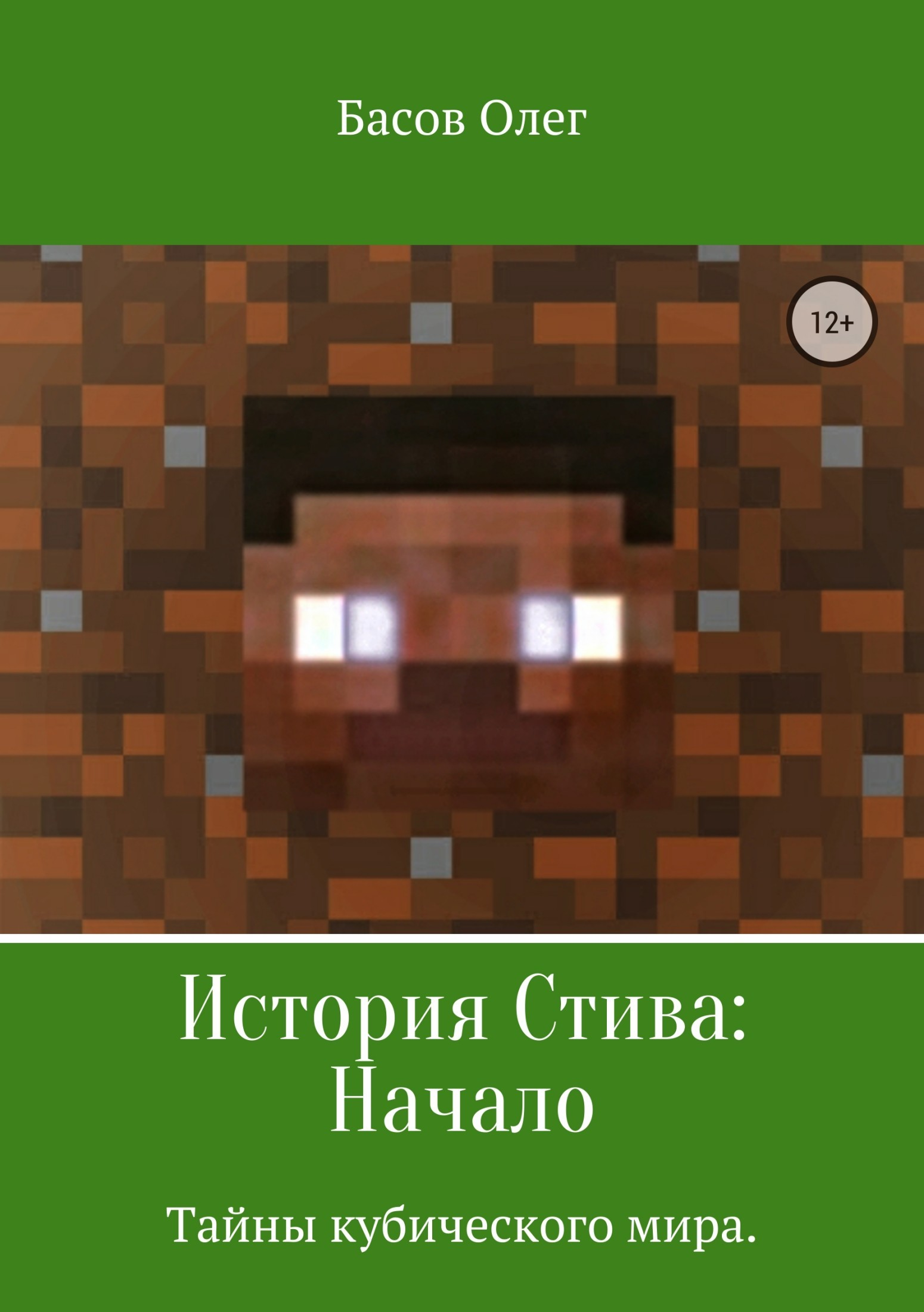 Олег Александрович Басов История Стива: Начало