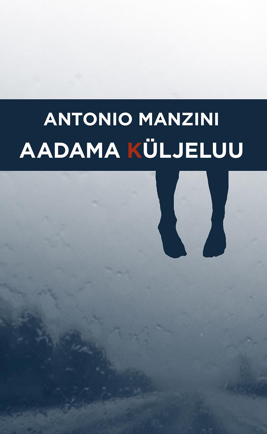 Aadama küljeluu