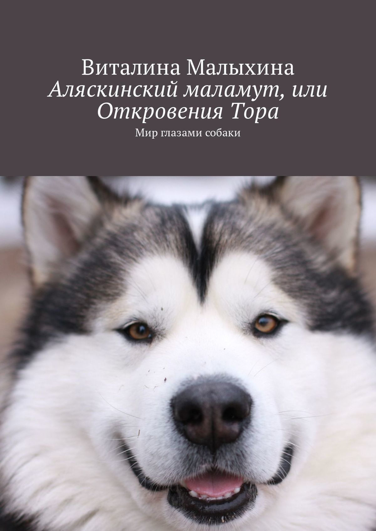 Виталина Малыхина Аляскинский маламут, или ОткровенияТора. Мир глазами собаки плащ и маска тора uni