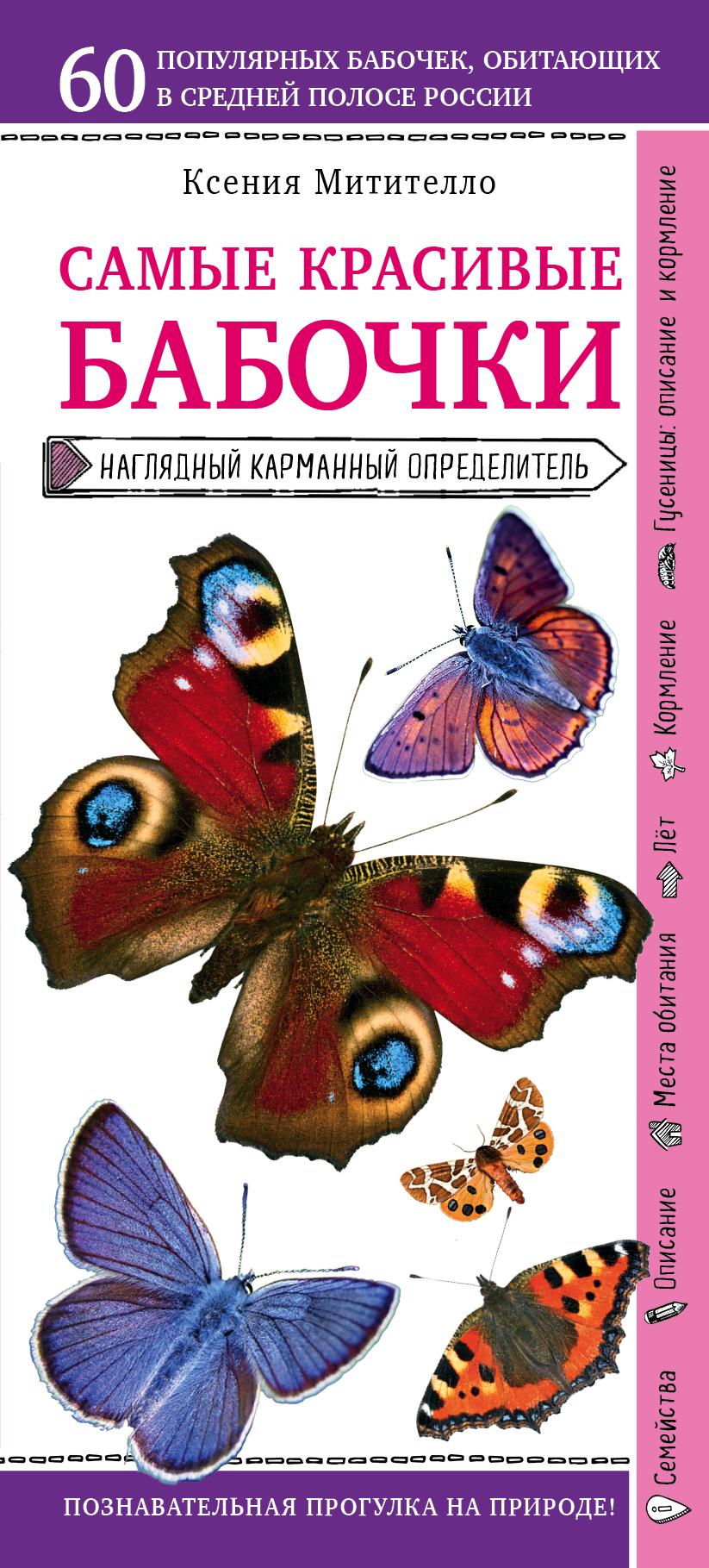 Ксения Митителло Бабочки. Наглядный карманный определитель митителло к б лекарственные цветы и травы наглядный карманный определитель