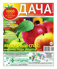 - Дача Pressa.ru 16-2015