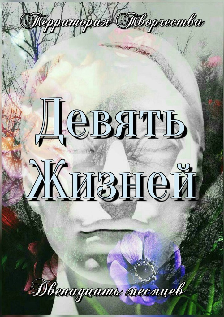 Валентина Спирина Девять жизней. Двенадцать месяцев цена
