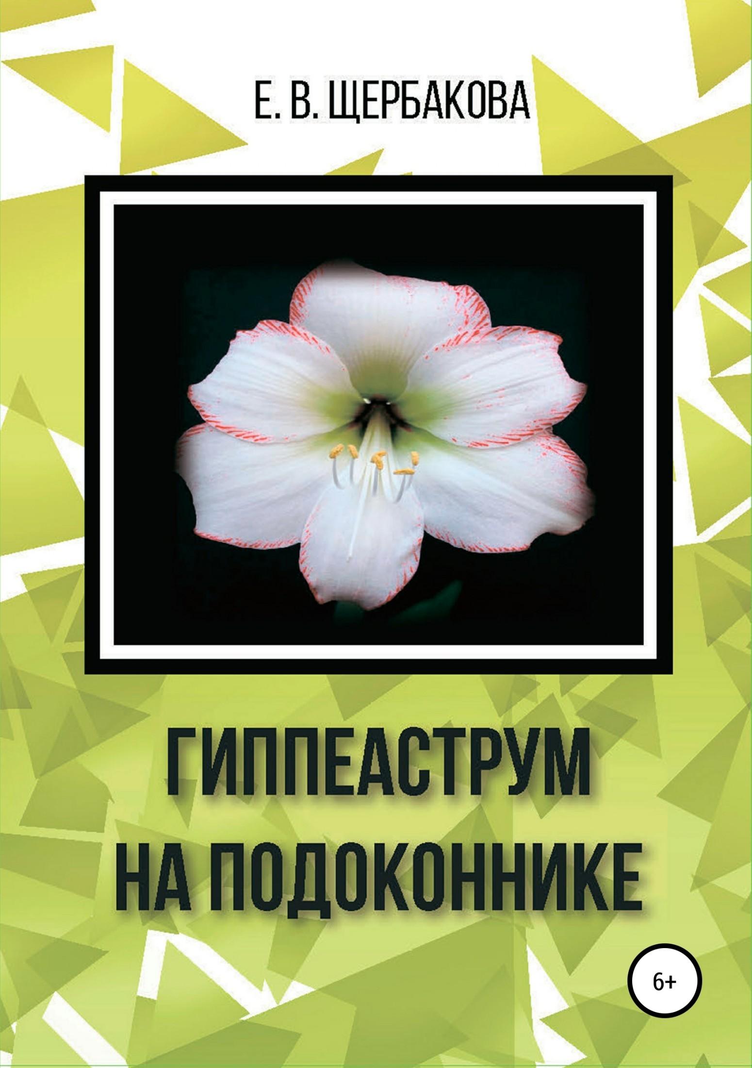 Елена Владимировна Щербакова Гиппеаструм на подоконнике аптека на грядке и на подоконнике