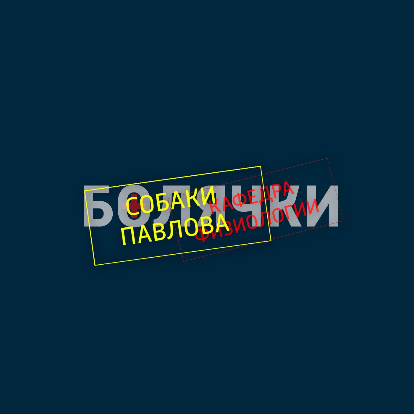 Творческий коллектив шоу «Сергей Стиллавин и его друзья» Мозг и любопытство