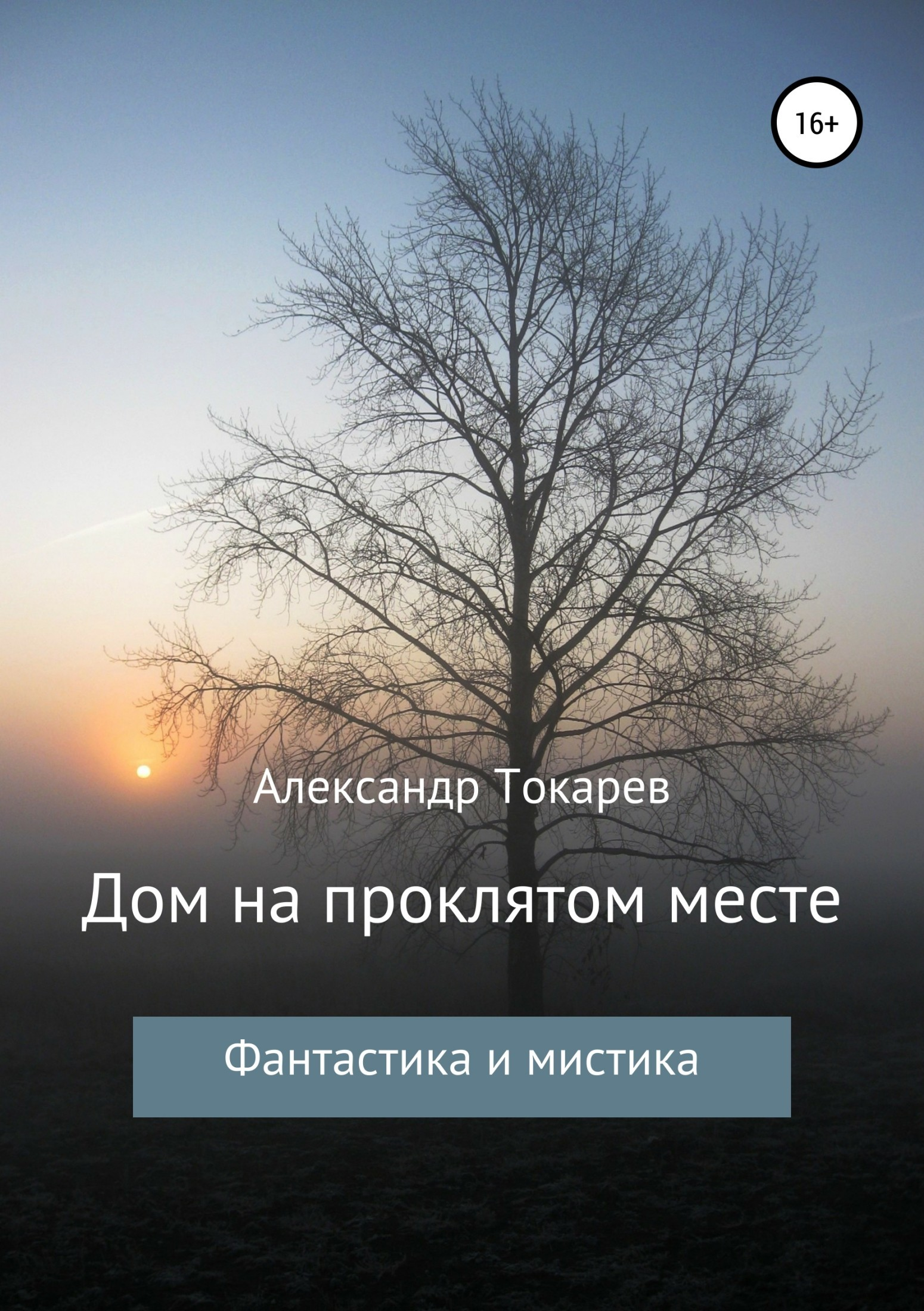 Александр Владимирович Токарев Дом на проклятом месте александр сухов тайные боги земли