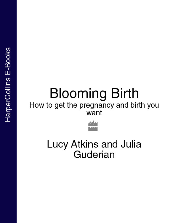 Blooming Birth: How to get the pregnancy and birth you want