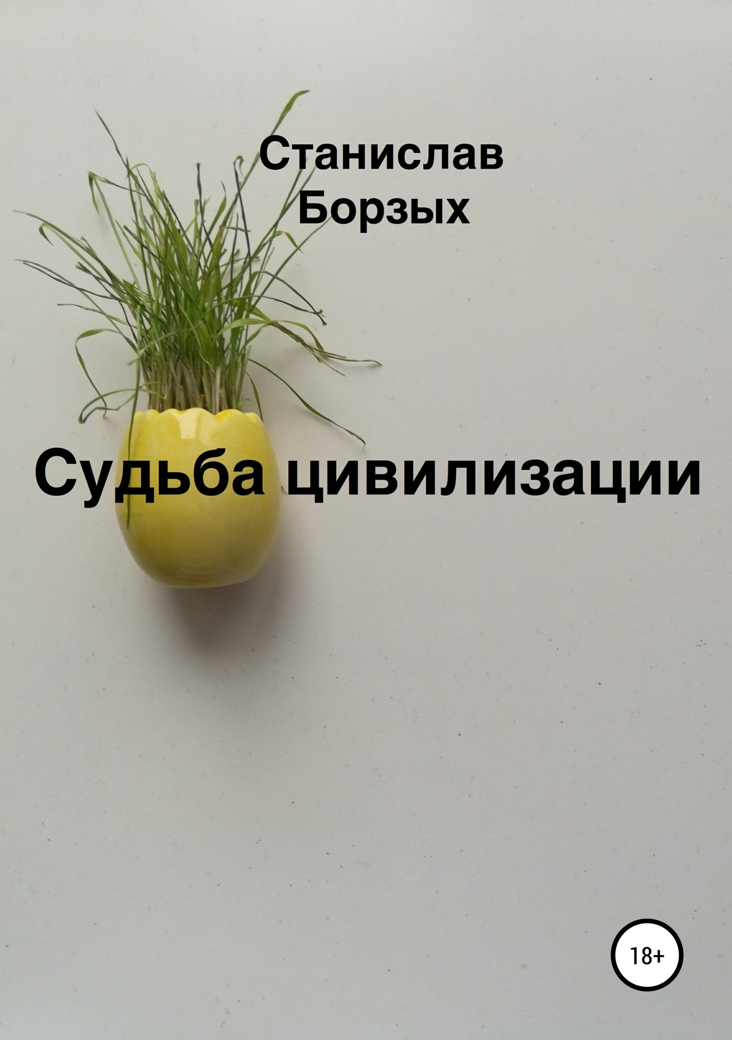 Станислав Борзых - Судьба цивилизации