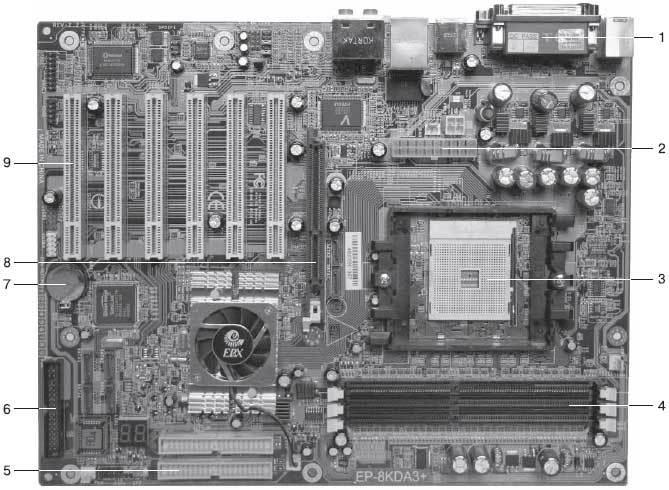Сколько битов памяти компьютера займет слово микропроцессор