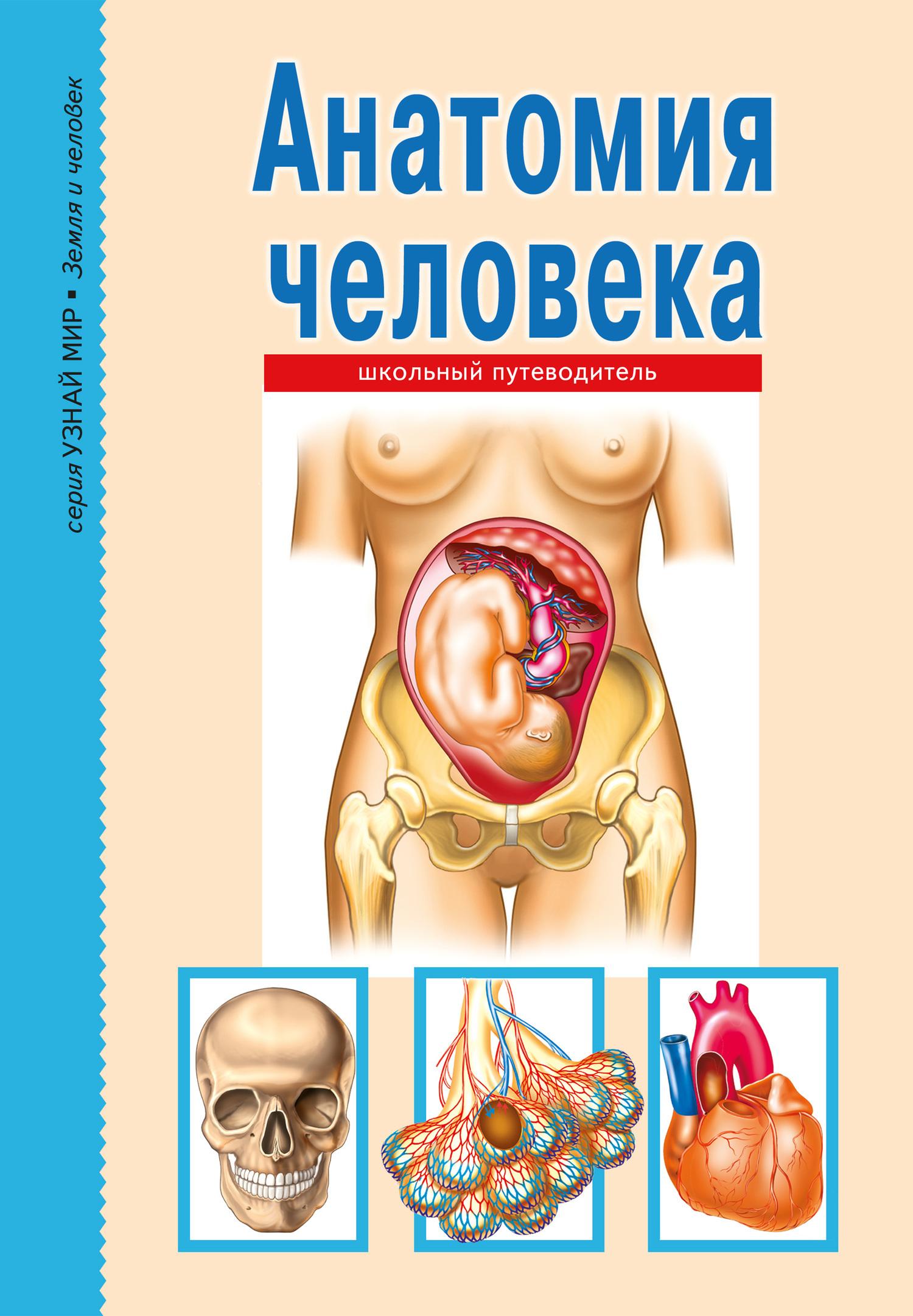 Сергей Афонькин - Анатомия человека