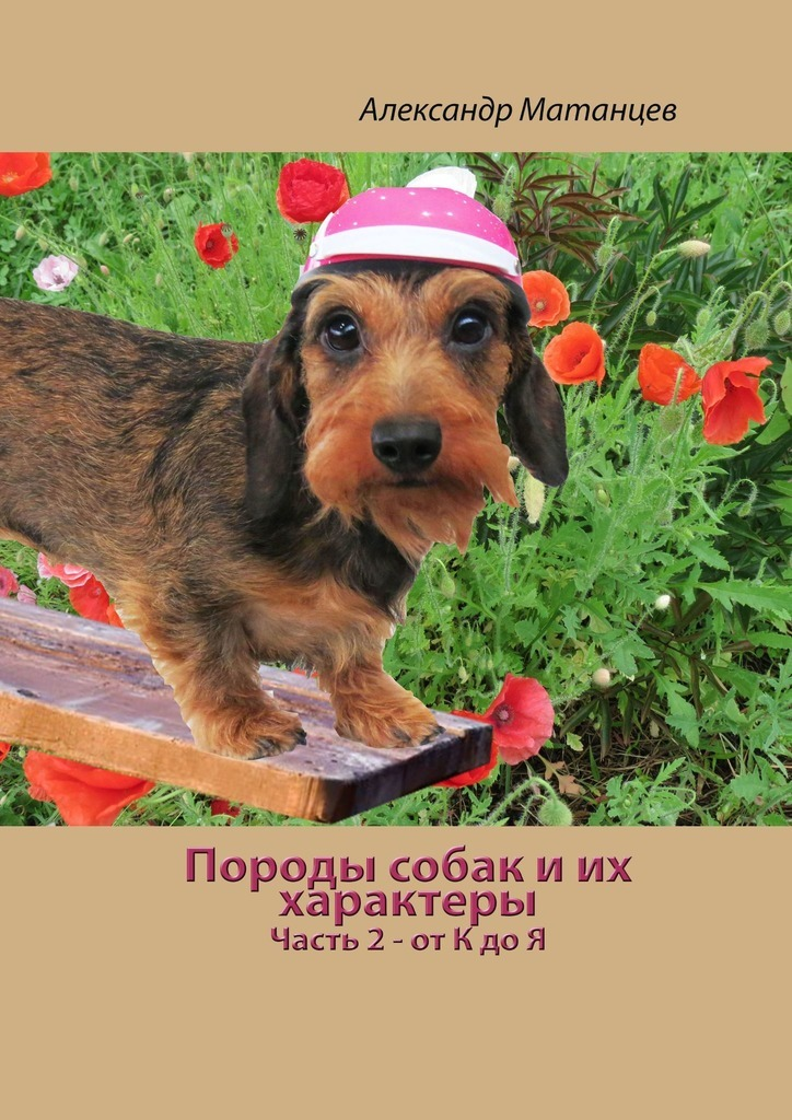 Александр Матанцев - Породы собак иих характеры. Часть 2– отКдоЯ