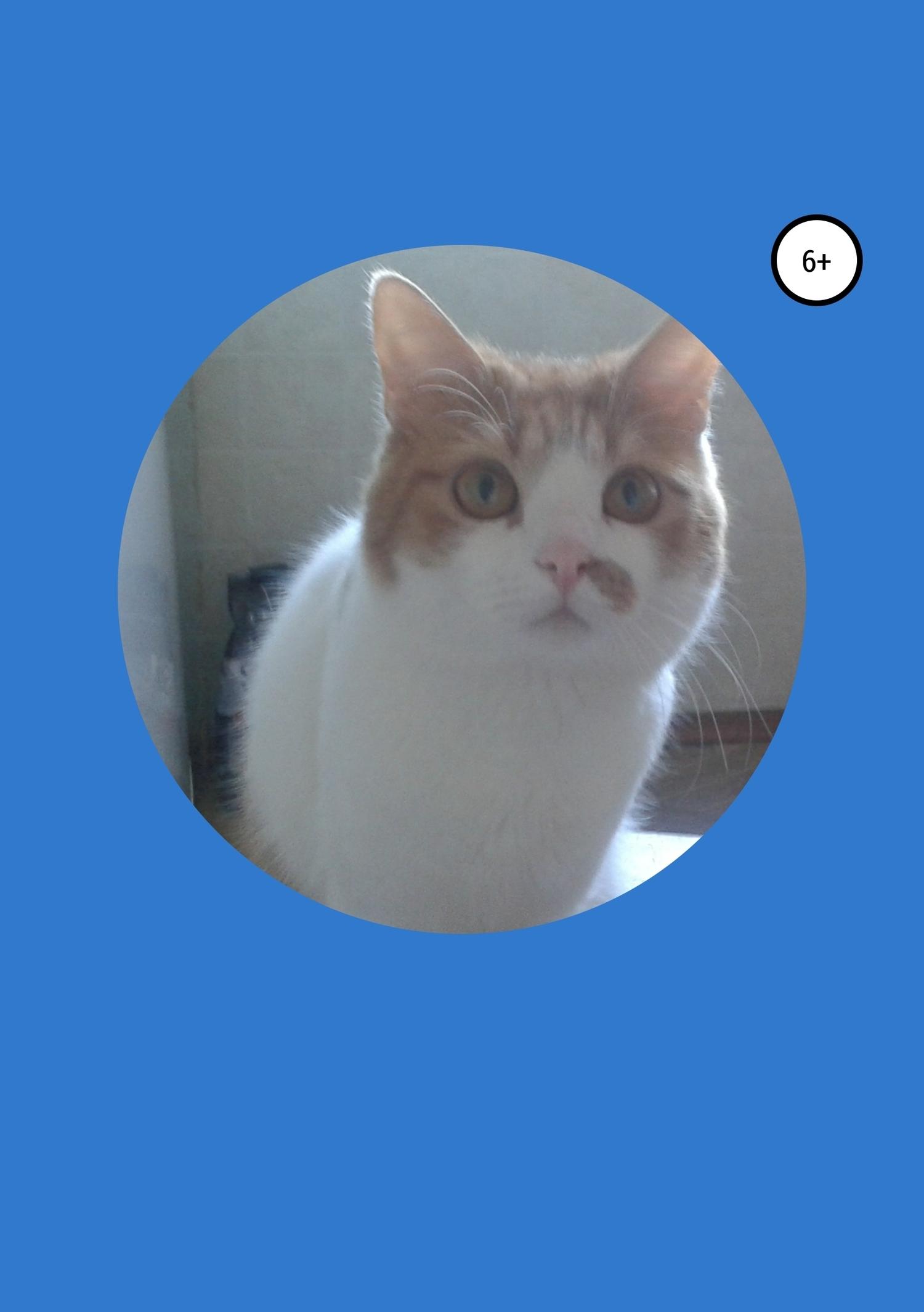 История кота Федьки